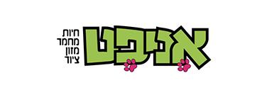 אניפט